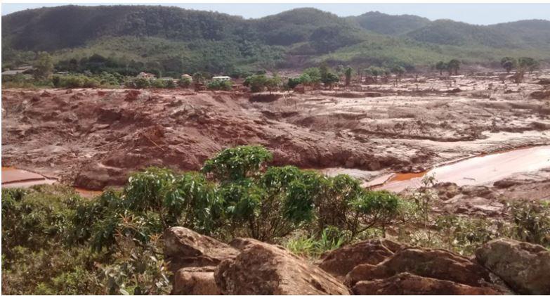 Arroz cultivado na lama da Samarco é mais pobre em nutrientes